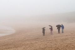 Stroll on the beach_18