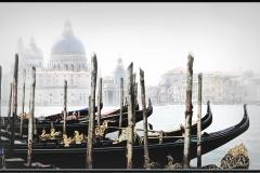 A Prospect of Venice