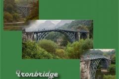 Views of the Bridge